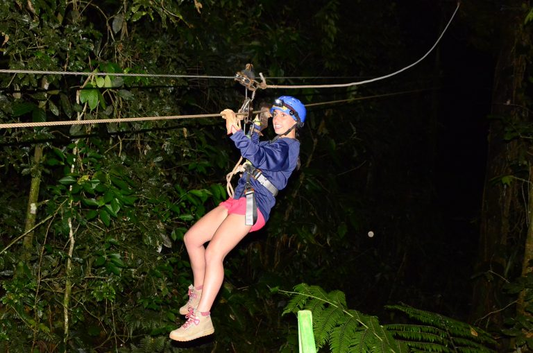 Night Canopy Tour