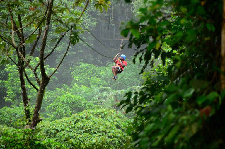 Zip Line Rainforest